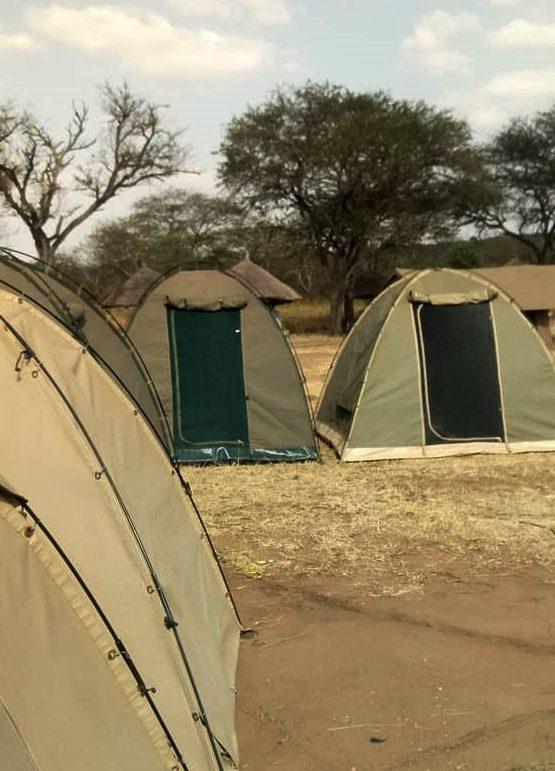 Tanzania-camping-safaris